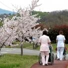 4月 お花見お散歩